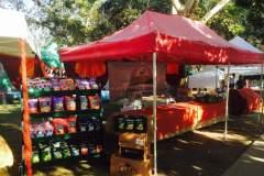 farmers-market-14-Copy