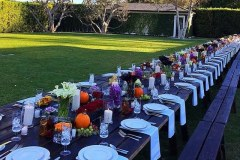 picnic-table-rental-diddy-3