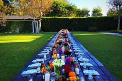 picnic-table-rental-diddy-4