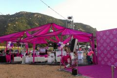 pinkparty-02