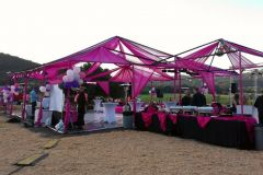 pinkparty-05