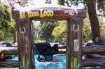 El Torro Bull Riding
