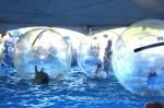 Human Bubble