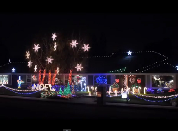 xmas-lights - Christmas Lights « Los Angeles PartyWorks, Inc. Equipment Rental