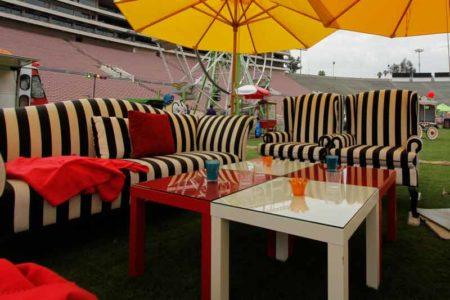 Zebra Furniture
