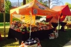 farmers-market-2-Copy