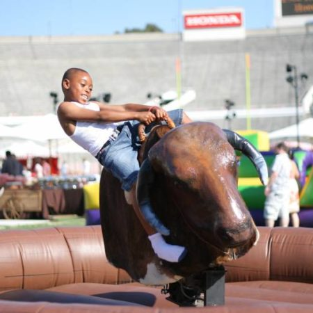 Mechanical Bull (Various Models)