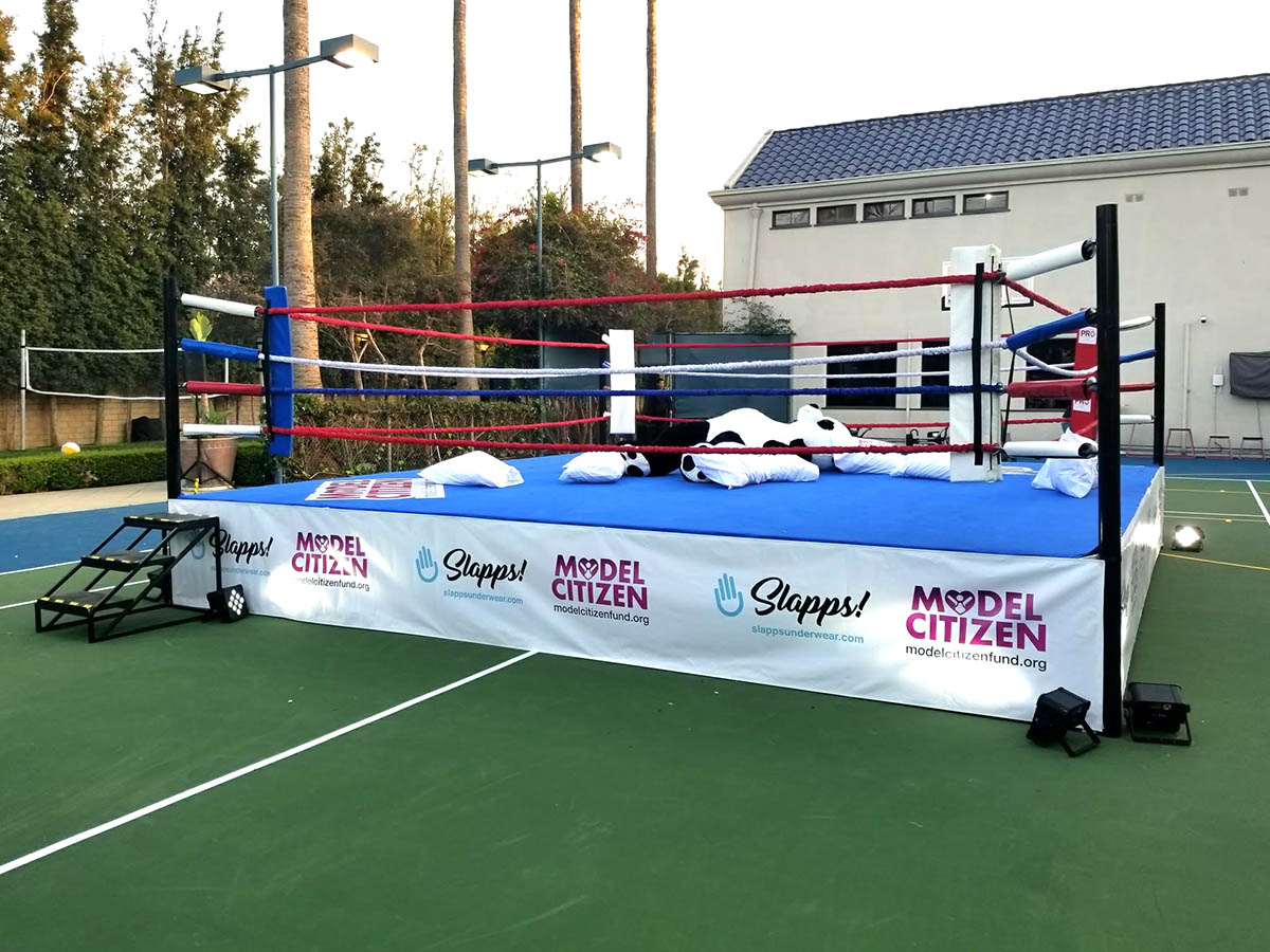 Regulation Boxing Ring Partyworks Interactive