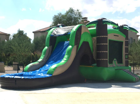 Tropical Slide and Bouncer ( wet and dry )