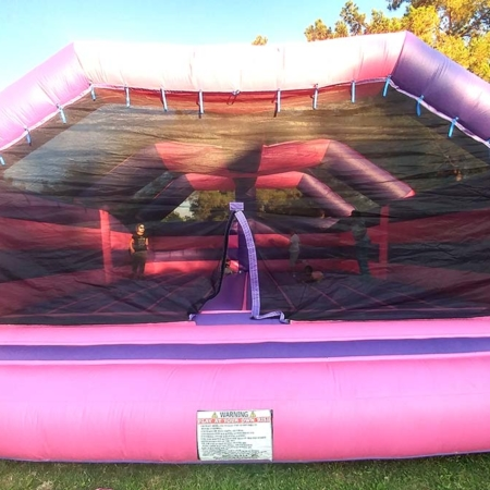 Big Bounce Bouncer
