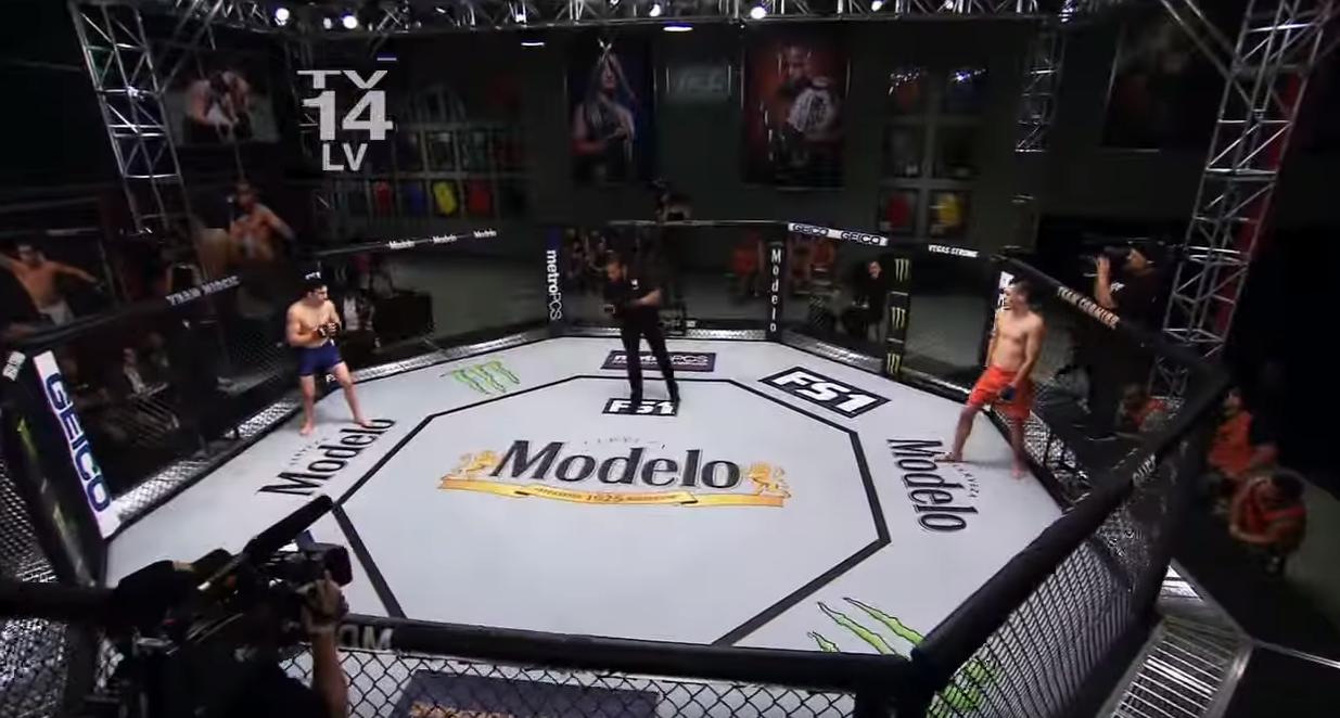 UFC Octagon Rental