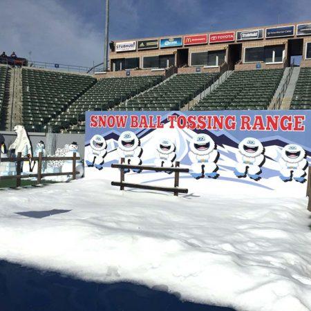 Snowball Tossing Range